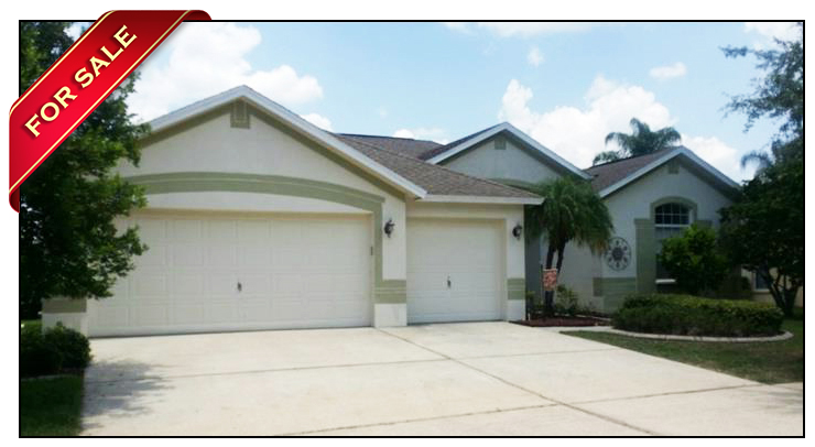 Pool home with pond view for sale in fishhawk ranch for Fish hawk fl